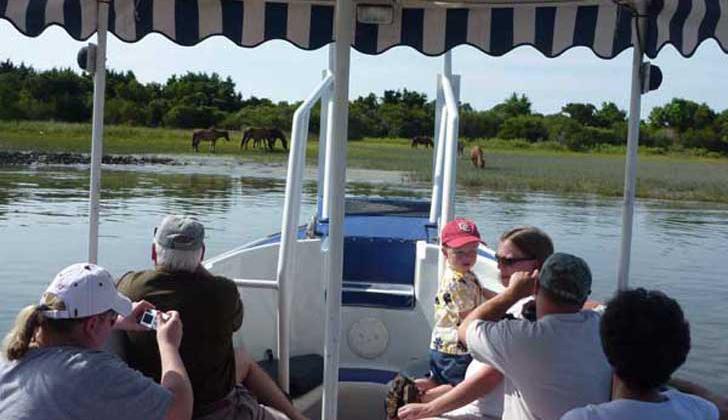 Waterbug Boat Tours Beaufort